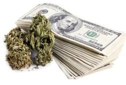 Drug & Marijuana Crimes
